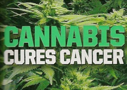 cannabis_cures_cancer