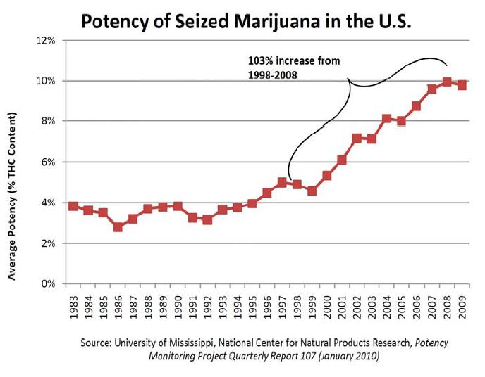 potency of marijuana
