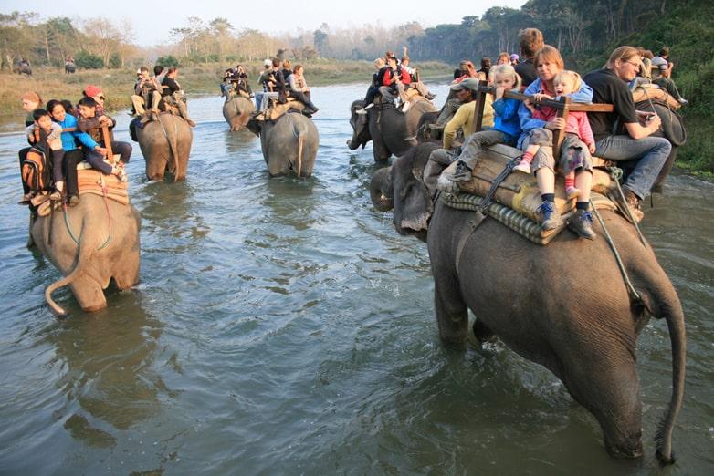 chitwan national park travel destination in Nepal