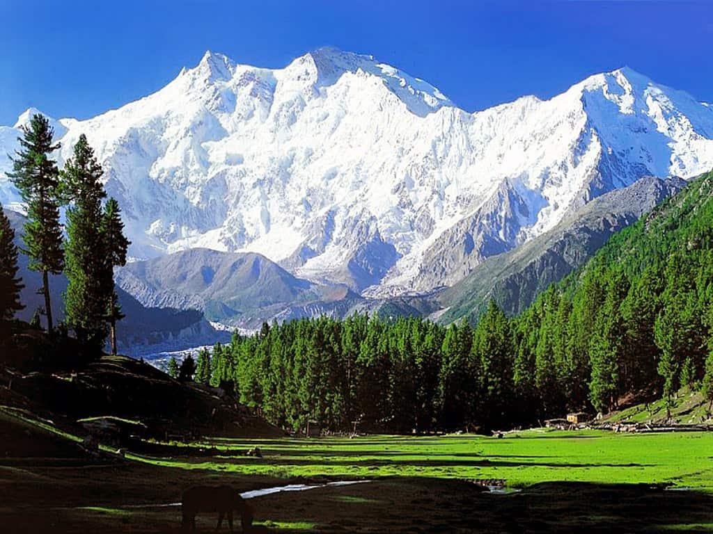 nanga prabat mountain