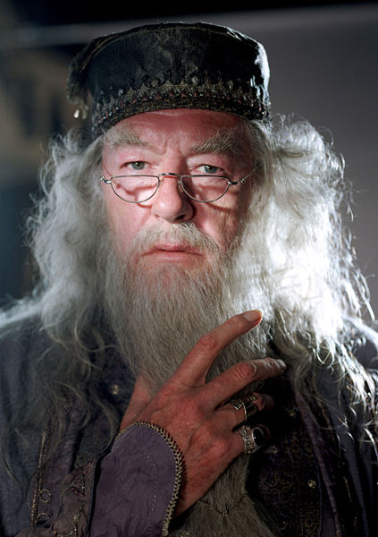 Albus Percival Wulfric Brian Dumbledore Harry Potter