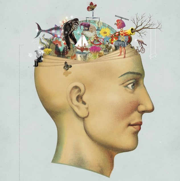 Biopsychiatric Theory