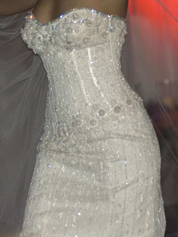 The Diamond Wedding Gown most expensive wedding dress