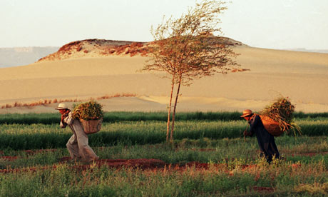 sahara desert used to be farmer land