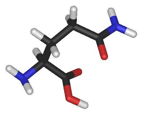 4 L-glutamine