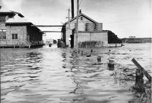 The 1935 Yangtze River Flood