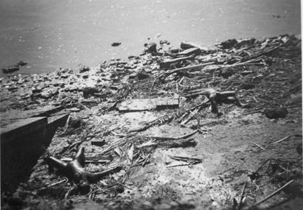 The 1970 Bhola Cyclone