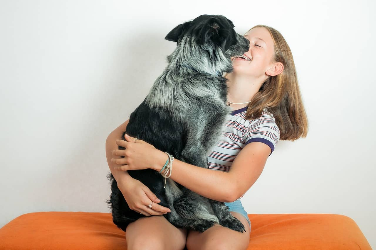 Why do dogs lick your face?