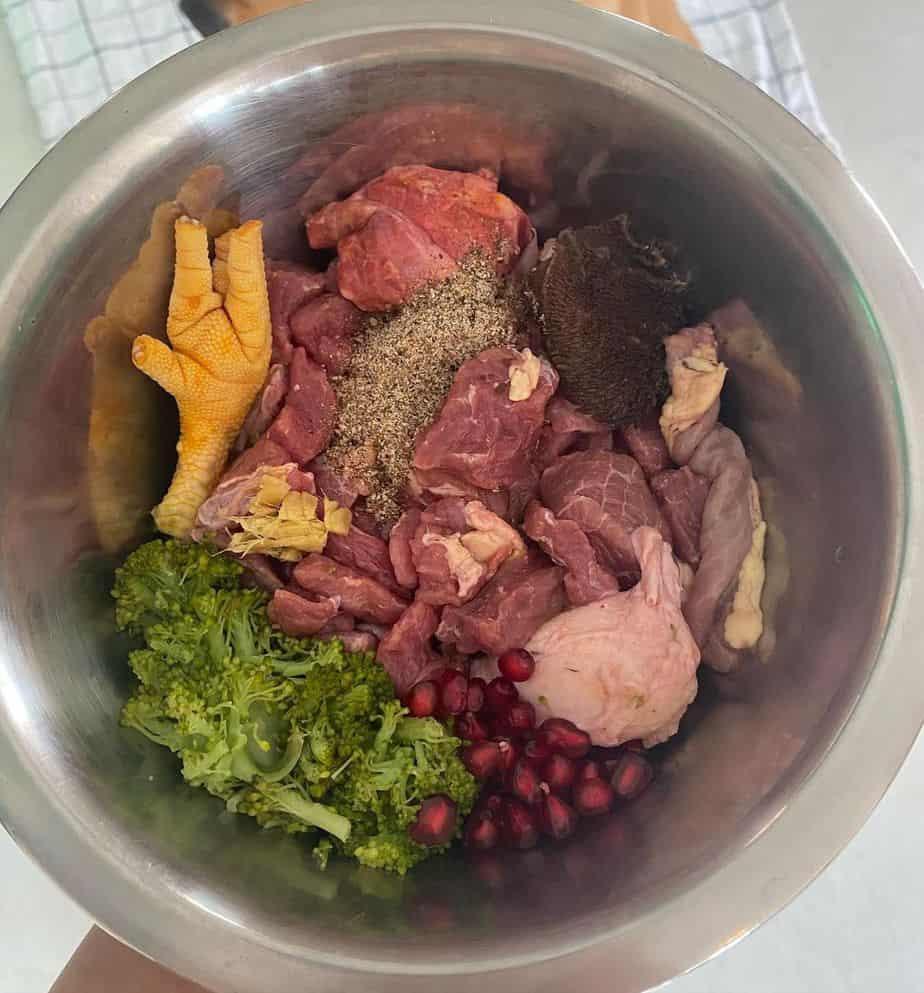Golden retriever dog food